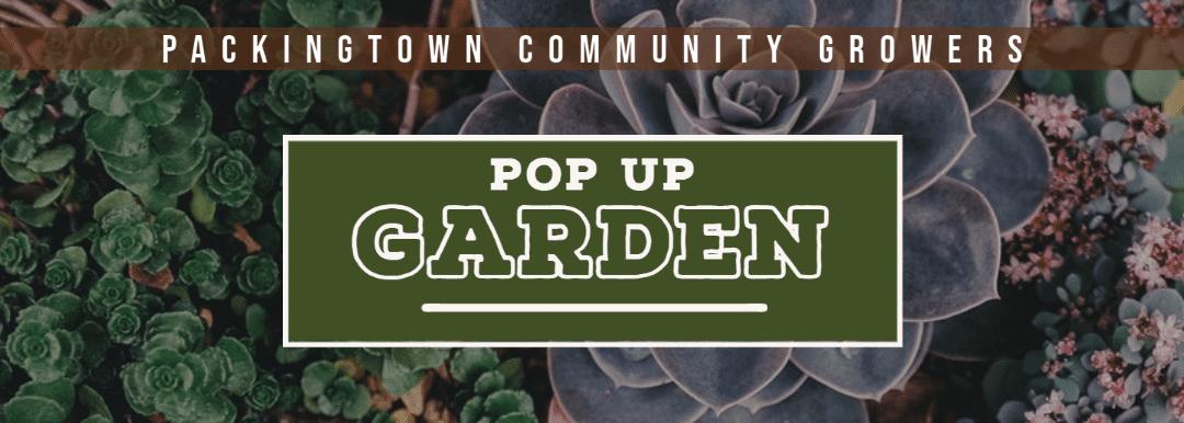 Packingtown Community Growers Pop-up Garden Launch!